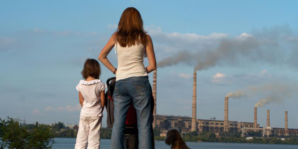 How Pollutants Affect The Brain