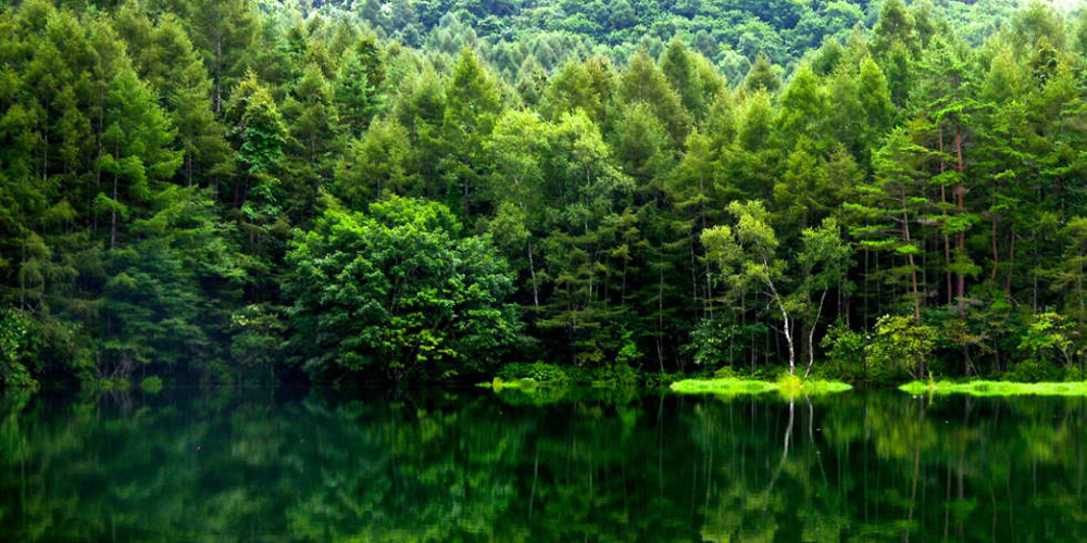 Japan-Assisted Green Projects To Cover An Initial 33 Villages